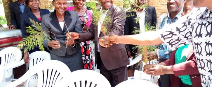 Distributing treee plantlets to Heads of Departments at the Headquarters